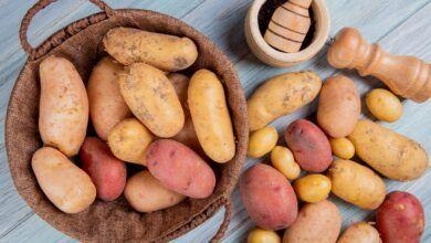 Patates & Tatlı Patates: Hangisi Daha Sağlıklıdır?