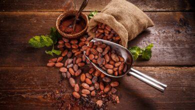 Kakaonun Vücuda Etkileri