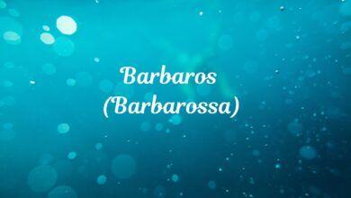 Barbaros Ne Demektir? Anlamı Nedir?