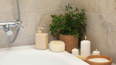 Banyo Dekorasyonlarına Uygun 5 Bitki Türü