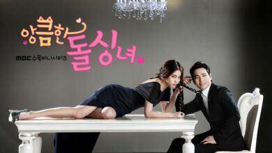Cunning Single Lady (Aşk Mantık İntikam Dizisinin Kore Uyarlaması)